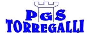 Logo PGS torregalli