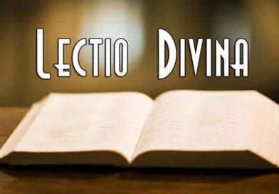 Lectio Divina: Ecco gli appuntamenti!